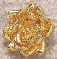 Bijoux naturels  Pendentif chaine 45 cm  Bouton de ROSE