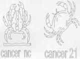 CANCER 22 JUIN - 22 JUILLET