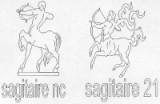 SAGITTAIRE 23 NOVEMBRE -21 DECEMBRE
