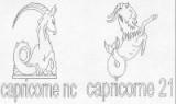 CAPRICORNE 22 DECEMBRE- 20 JANVIER