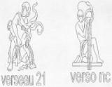 VERSEAU 21 JANVIER - 19 FEVRIER