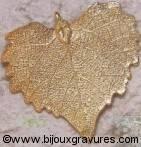 Bijoux naturels  Boucles D'oreilles Feuille de peuplier veinée